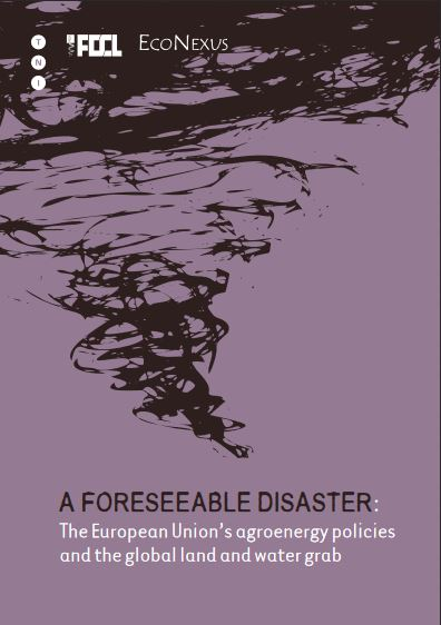 A Foreseeable Disaster, cover page